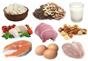 Protein for bodybuilding